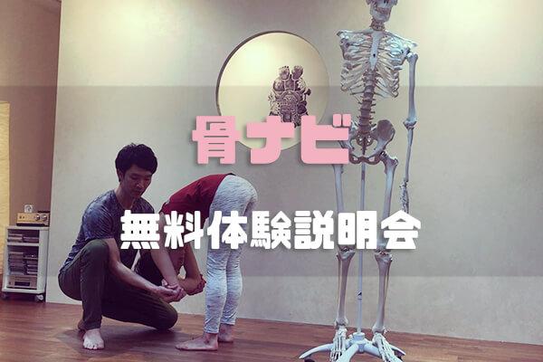 【体験レポ】骨ナビ(ホネナビ)短期集中養成講座の無料体験説明会