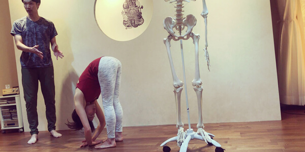骨ナビ(ホネナビ)短期集中養成講座の無料体験説明会