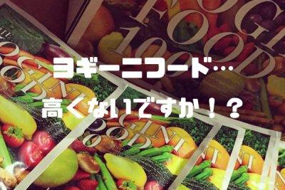 ヨギーニフード100って…高いよ!代用となるコスパの良い商品は…ずばりコレ!